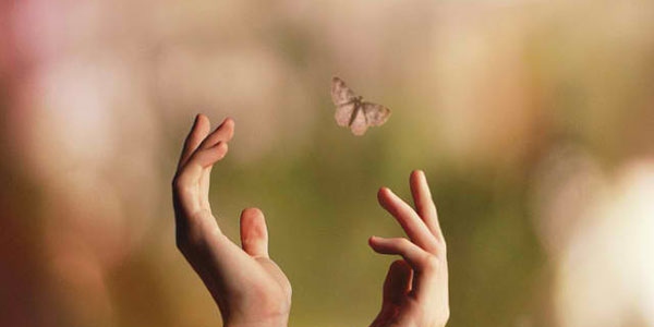 letting go butterfly